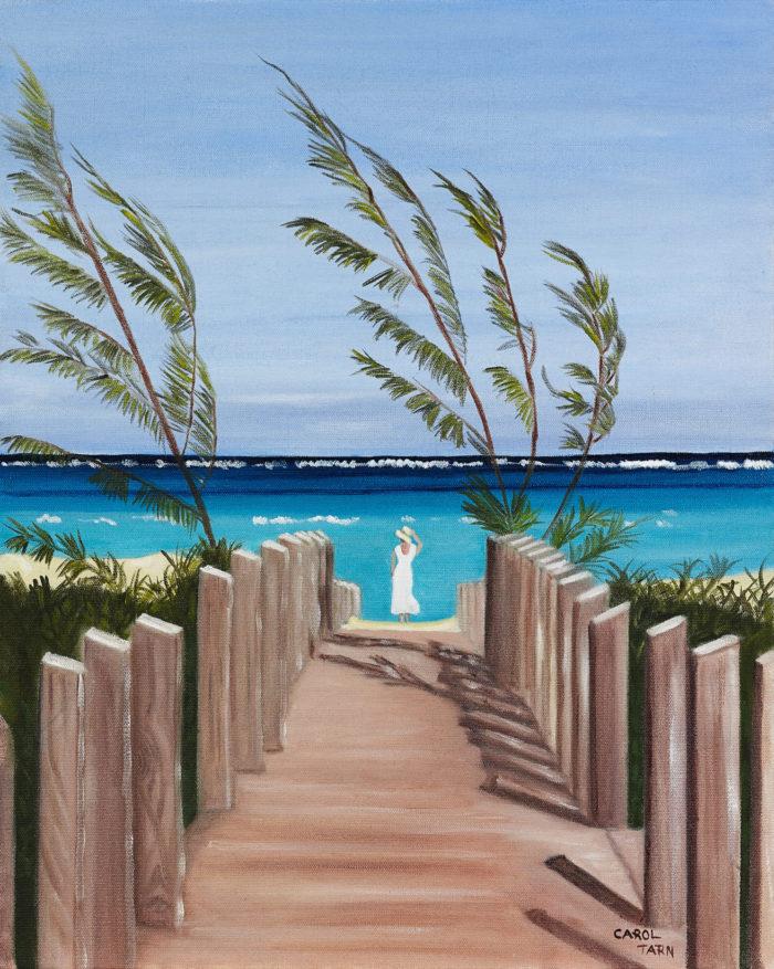 Parrott Cay 2
