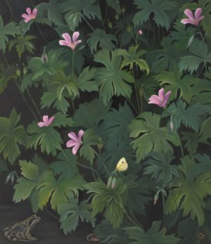 Amongst The Geraniums Oil On Linen 30X30Ins